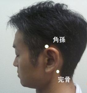 側頭部育毛ツボ